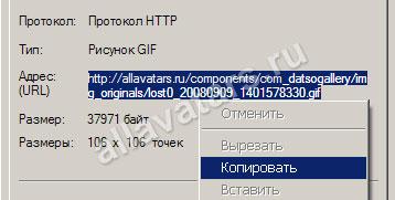 Свойства URL в Internet Explorer