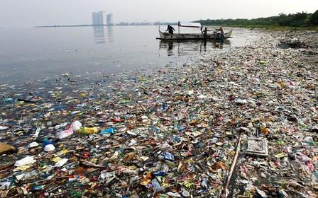 Угроза экологии: всё дело в пакете?