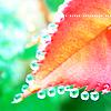 http://allavatars.ru/images/joomgallery/thumbnails/_17/_18/kartinka_osen_16_20120825_2061590894.png