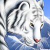Kartinka tigra_16