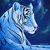 Kartinka tigra_47