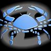Znak zodiaka_25
