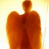 Angel dobra_20
