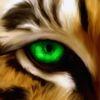 Kartinka tigra_34